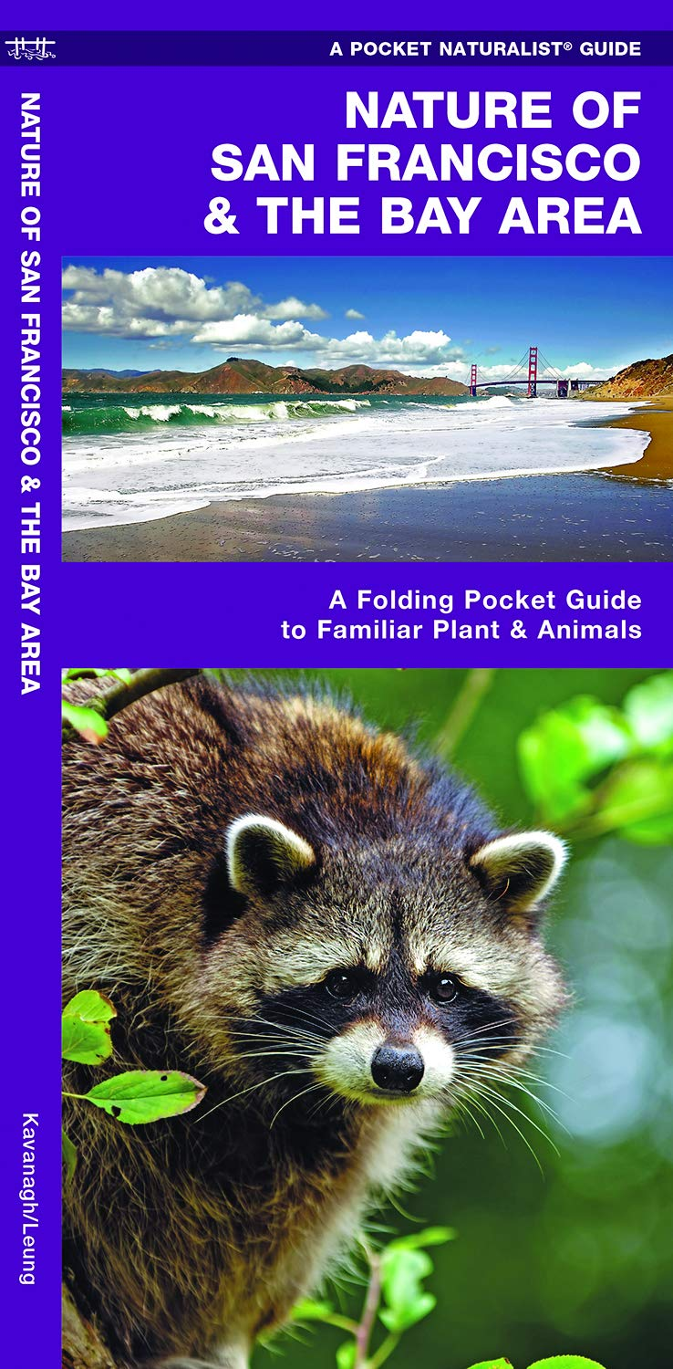 Nature of San Francisco & the Bay Area: A Folding Pocket Guide to Familiar Plants & Animals (A Pocket Naturalist Guide) PDF
