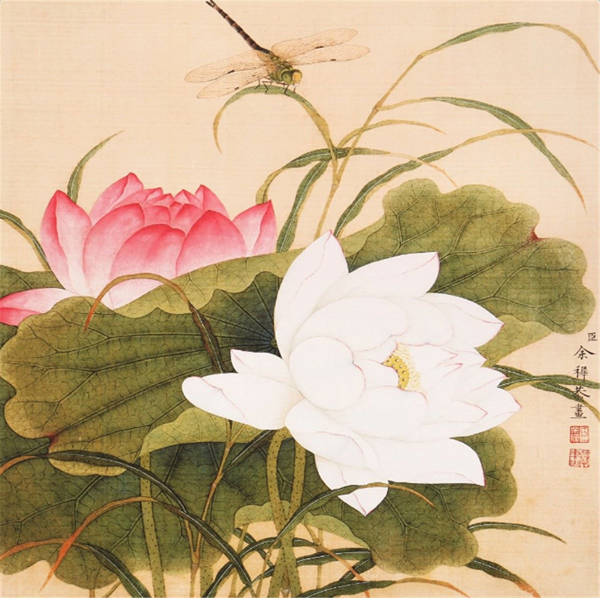 Amazon Ink Wash Modern Pink Lotus Flower Decor White Flowers