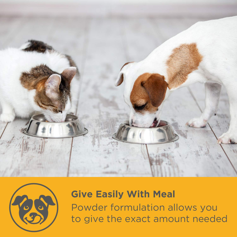 maxxidog - maxxidigest+ Suplemento para Perros Avanzado para el Sistema Digestivo e Inmunológico - Enzimas Digestivas para Mascotas - Caninos ...