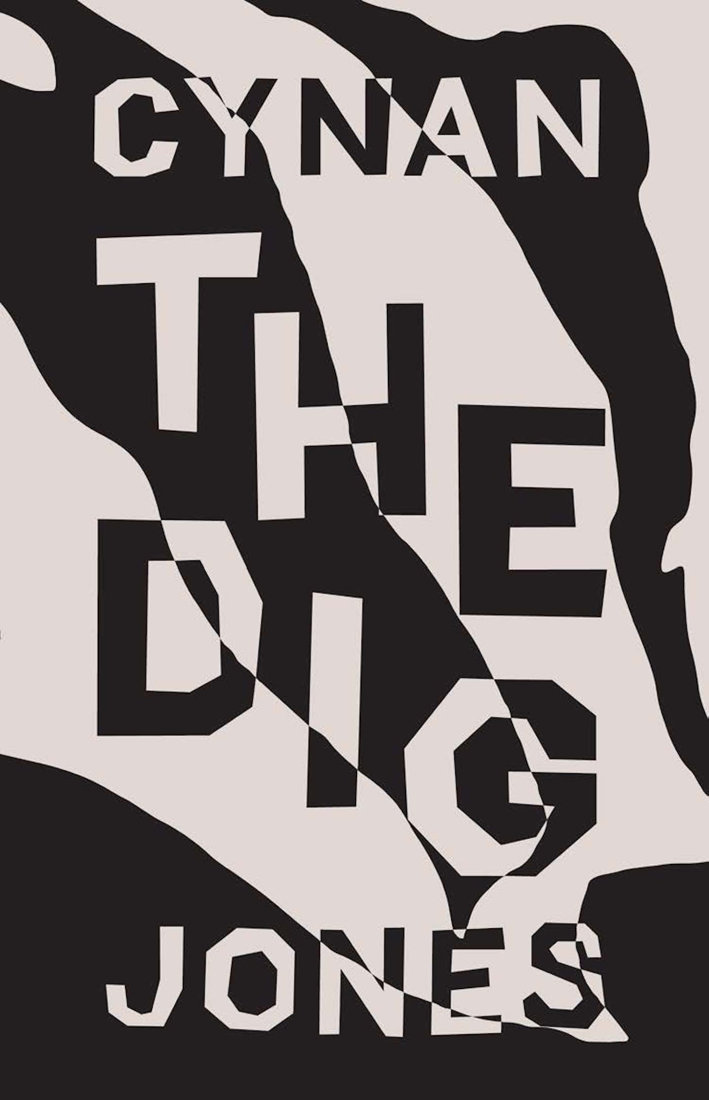 The Dig pdf