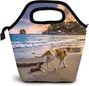 Lunch Bag Tote Lunchbox Handbag, Sunset Dog Sea Wave Sky Women Insulated Food Container Gourmet Cooler Warm Pouch For School Work Office