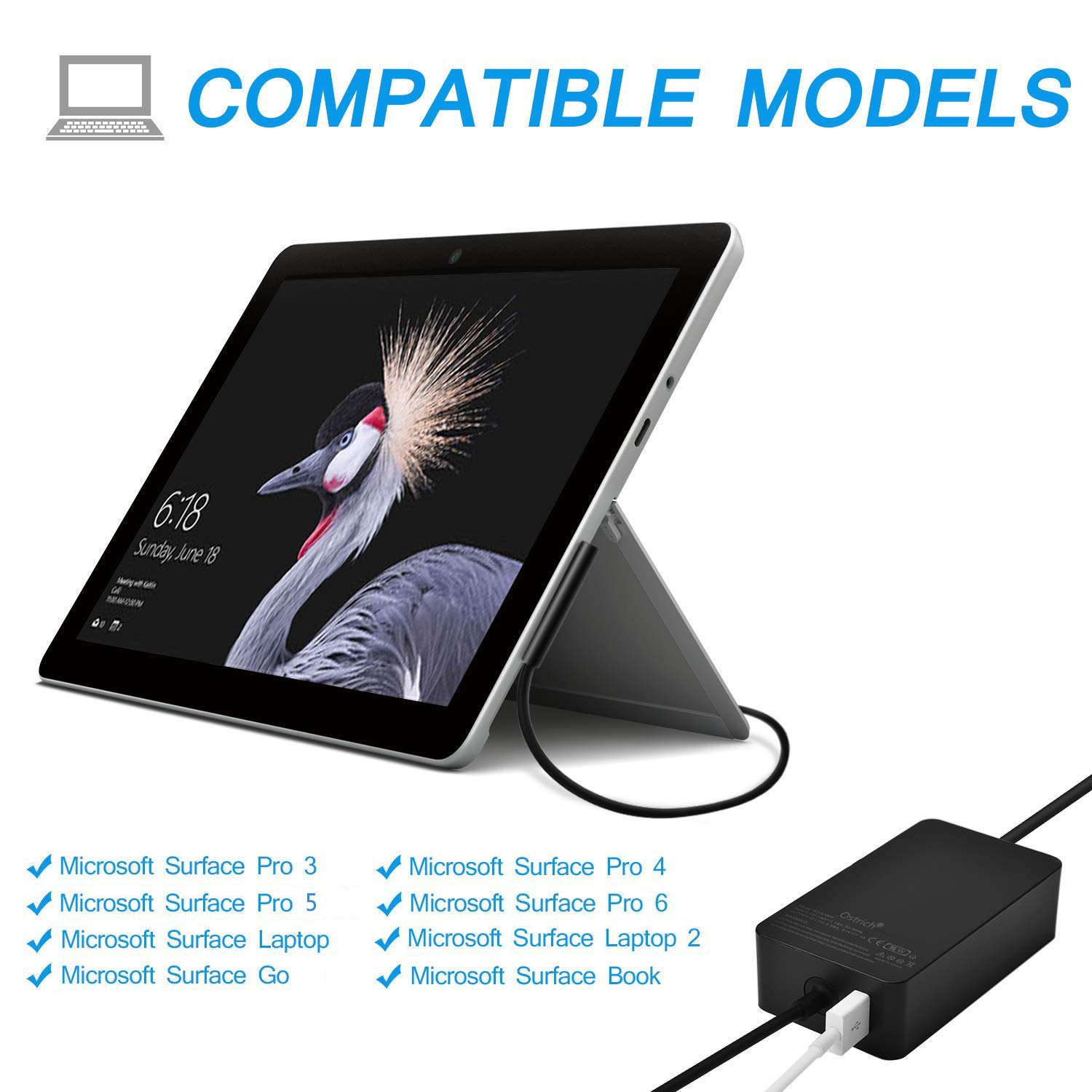 Amazon.com: Cargador Ostrich Surface Pro (con certificado UL ...