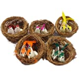 Asian Hobby Crafts Artificial Mini Birds with Nest for Model Making/Party Decorations/Carnivals/Celebrations/School Projects (Pack of 5pcs)