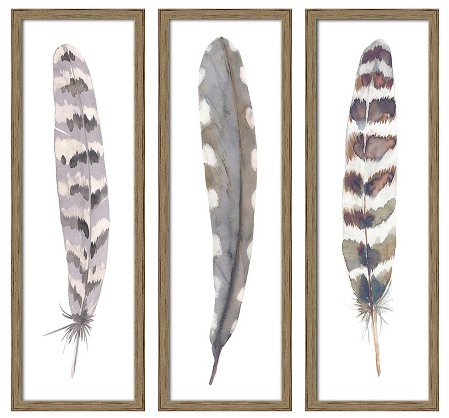"12""X36"" Framed 3-Pack Feathers : Target"