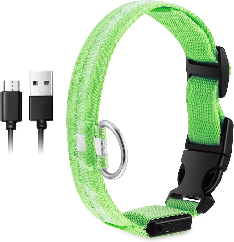 Collar de Perro de Seguridad LED Collar Mascotas de Luz USB Recargable Collar de Mascotas de LED Brillante Collar Impermeable Iluminado con 3 Modos de Brillar para Visibilidad (Verde)