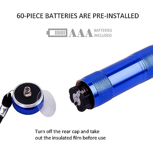 Fastpro 20-Pack Aluminium 6-DEL lampes de poche Set avec Cordon et 60 pièces AAA et