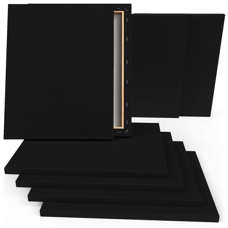Confezione da 12 Tele Pittura Pronte Prive di Acidi 100/% Cotone ARTEZA Tela per Dipingere Nera Intelaiata da 8x10 Pollici per Colori Acrilici e ad Olio Pittura Fluida e altre Tecniche Umide
