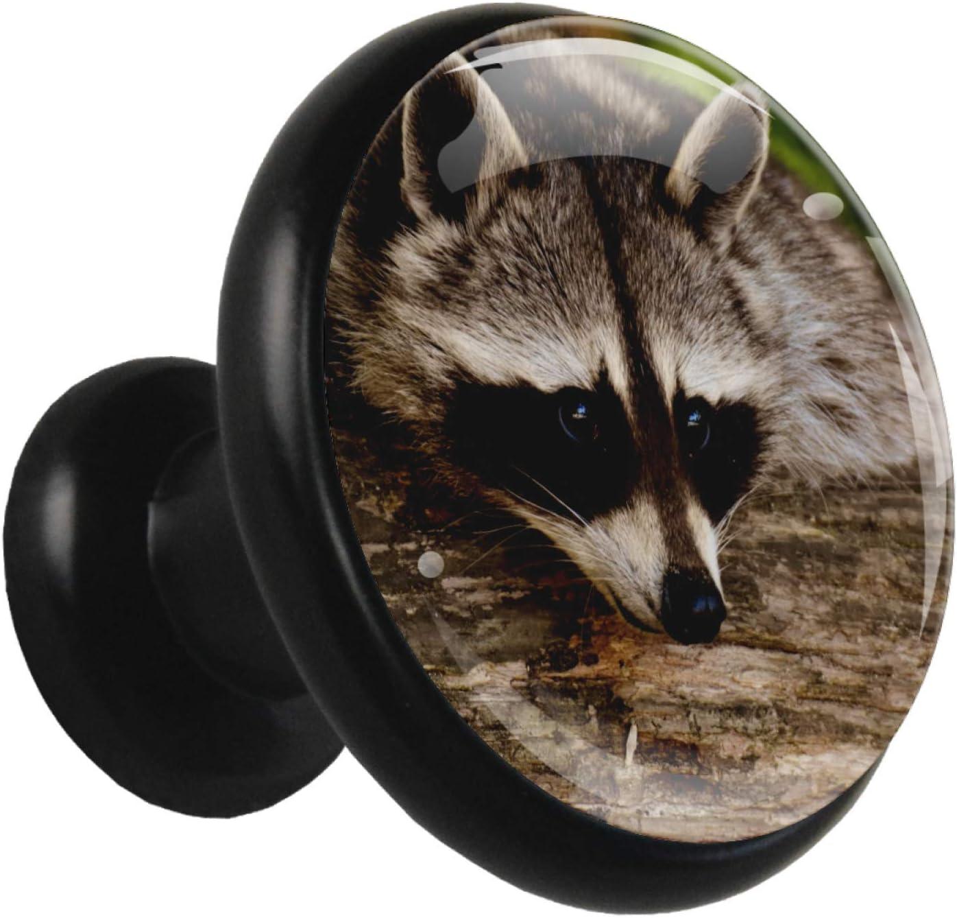Bathroom Cabinet Knobs Cute Brown Raccoon Kitchen Knobs Metal Black Modern Furniture Glass Knobs for Jewelry Box Dresser (4pcs) 1.26x1.18x0.66in