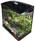 AquaLife Fish Tank Aquarium Curved Glass Filter Cabinet Stand Pump Light 10L 35L 70L 100L (100L)