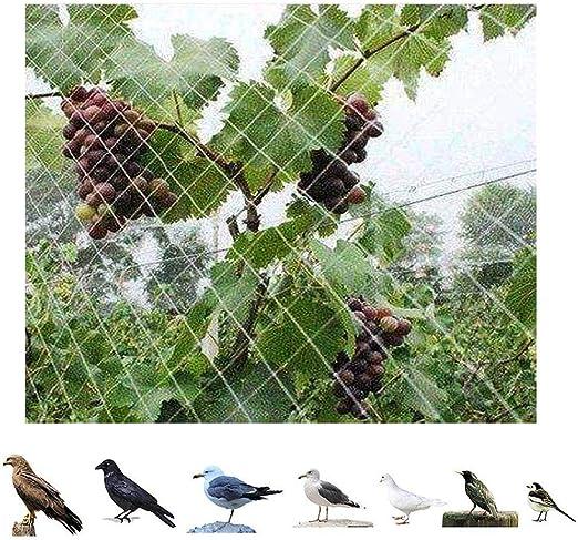 Red De Aves De 5M X 6M Red De Estanque De Aves Anti Jardín para Protección