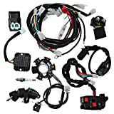 Amazon.com: Hitommy Full Electrics Wiring Harness Loom CDI Coil for GY6  150CC ATV Quad Go Kart Buggy: Home & KitchenAmazon.com