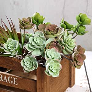 greenery decor greenery and floral Rose Eichornia Succulent Succulent stems Keleas keleas greenery Succulents