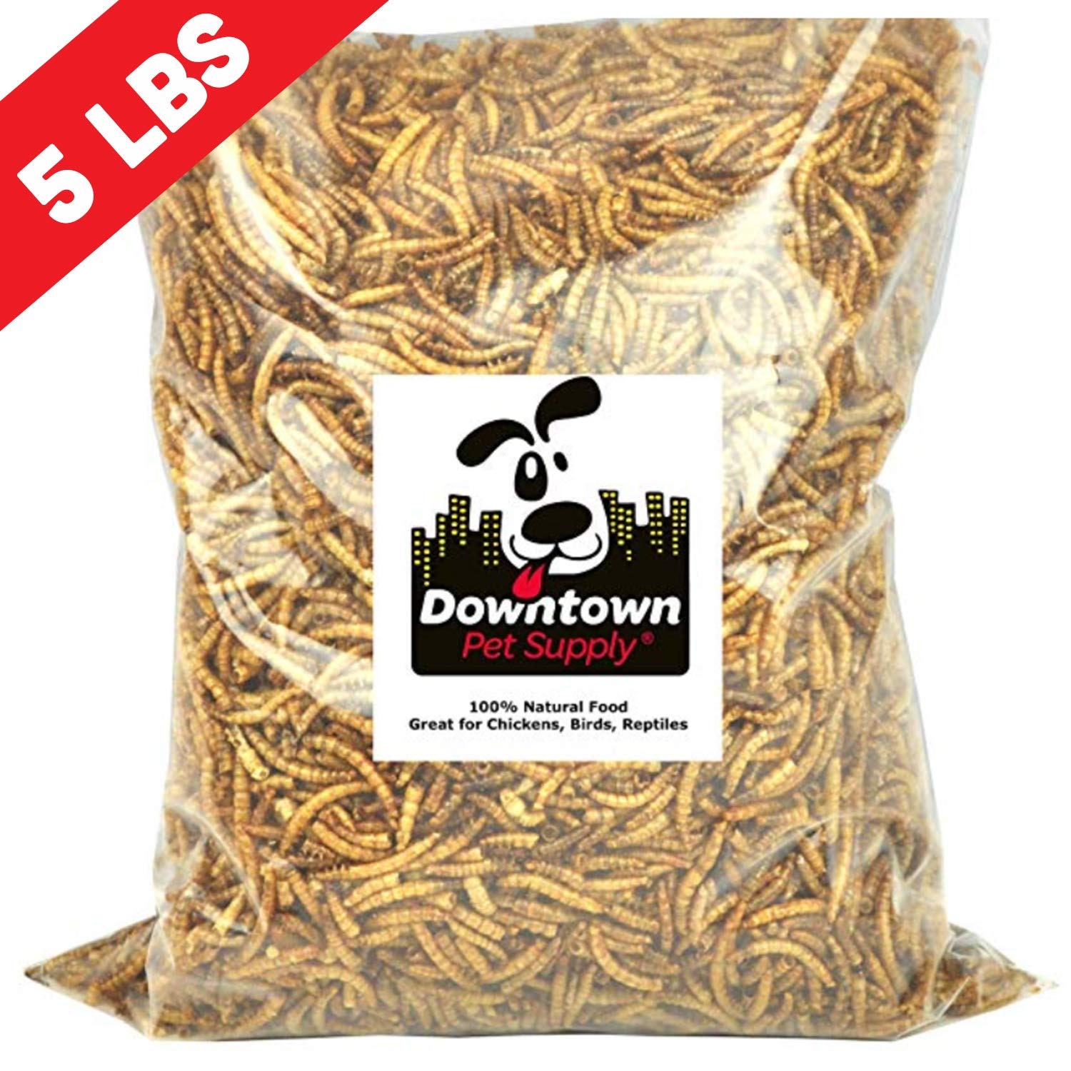 Downtown Pet Supply Dried Mealworms 100% Natural Treats for Wild Birds, Chickens, Reptiles, Fish, Turtles - Meal Worms Dried Food for Birds, Turkeys (5 LB) by Downtown Pet Supply
