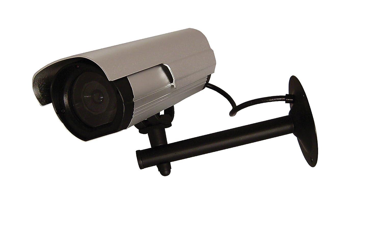 Chacón 34.488 cámara simulada/cámara de vigilancia (la cámara al aire libre alrededor: Amazon.es: Informática