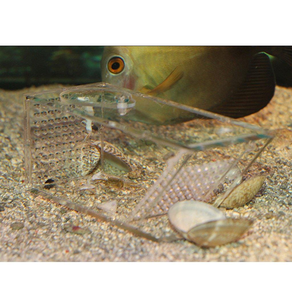 PETSOLA Aquatics Aqua Fish Trap Fish Pest Acuario Catcher Se/ñuelo Fish Camarones Cangrejos