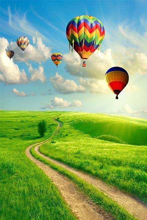 Amazoncom Ofila Vinyl Hot Air Balloons Backdrop 3x5ft Green