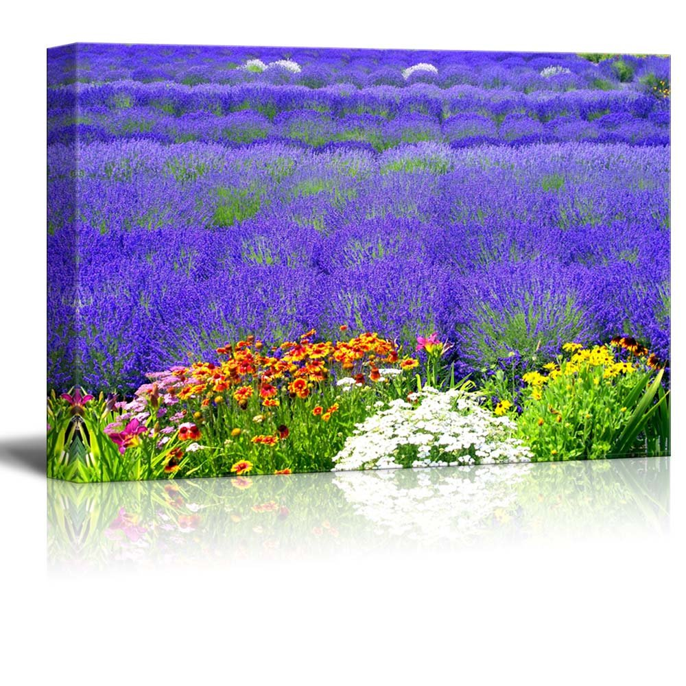 Beautiful scenery of lavender field with multicolored flowers wall beautiful scenery of lavender field with multicolored flowers wall decor izmirmasajfo