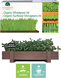 Organic Microgreens Growing Kit with Beautiful Wooden Countertop Planter, Soil & Organic Sunflower and Mixed Microgreens Seeds for 2 Crops. 100% Guaranteed to Grow.