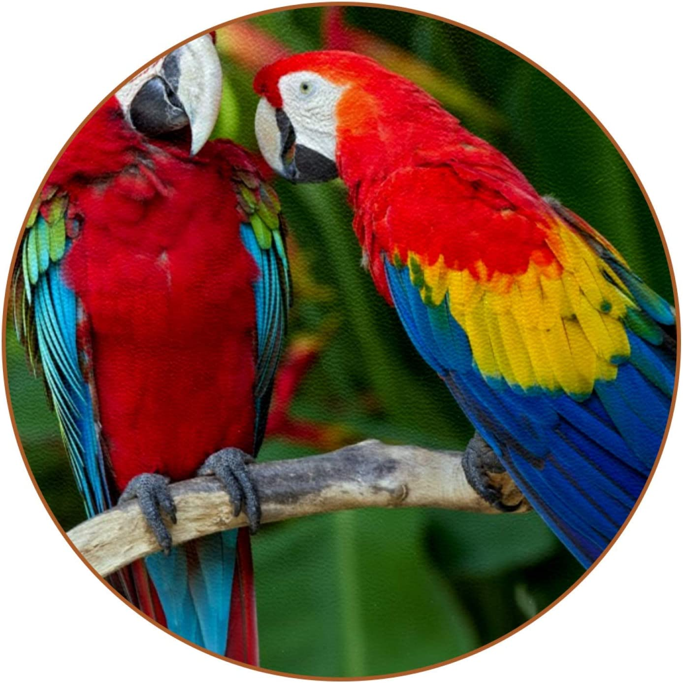 LORVIES Scarlet Macaw Parrots Tropical Birds Leather Coasters Round Coffee Mug Glass Cup Placemats Cup Mats Place Mats 6 PCS