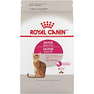 Royal Canin Feline Health Nutrition Selective 34/29 Savor Sensation Dry Cat Food