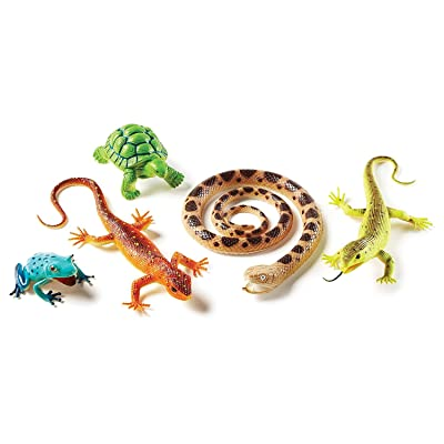 Learning Resources Jumbo Reptiles & Amphibians, Tortoise, Gecko, Snake, Iguana, and Tree Frog, 5 Animals, Ages 3+: Toys & Games