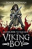 Viking Boy