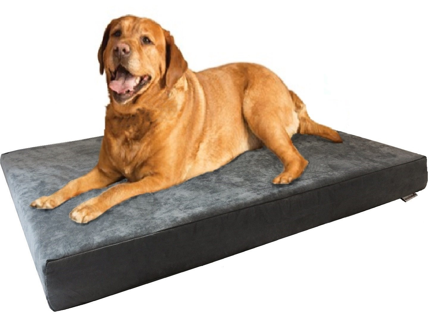 Dogbed4less Waterproof Orthopedic Cooling Memory Dog Bed for Large and Extra Large Dogs, Suede Gray Color, Jumbo 55X47X4 Inches by dogbed4less