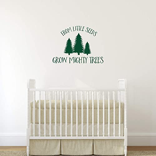 From Little Seeds Grow Mighty Trees Wall Sticker Fir Tree Wall