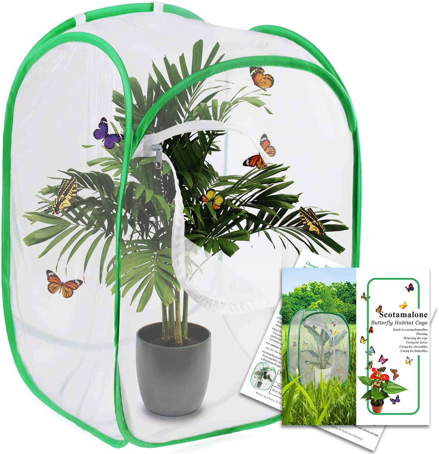 Scotamalone Butterfly Habitat Cage - Butterfly Cage - Insect Net - Terrarium Net Pop-up 23.6 Inches Tall White Green Kids Butterfly Net - Watch Butterfly Life Cycle - Watch Amazing Transformation
