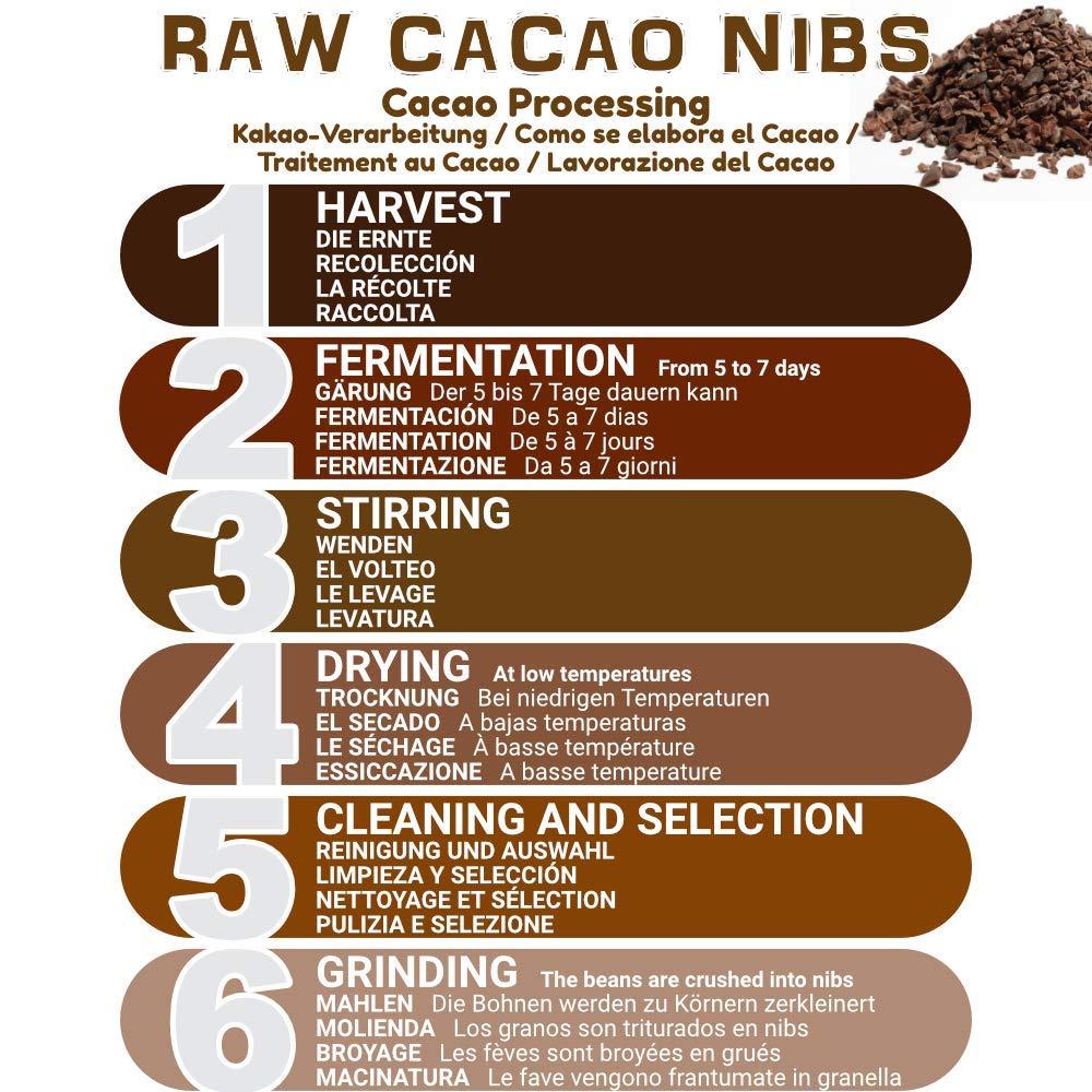 Nibs de Cacao Crudo Ecológico 1 kg | 100% Puntas de Cacao Bio, Natural y Puro | Cultivado en Perú a partir de la planta Theobroma cacao | Rico en ...