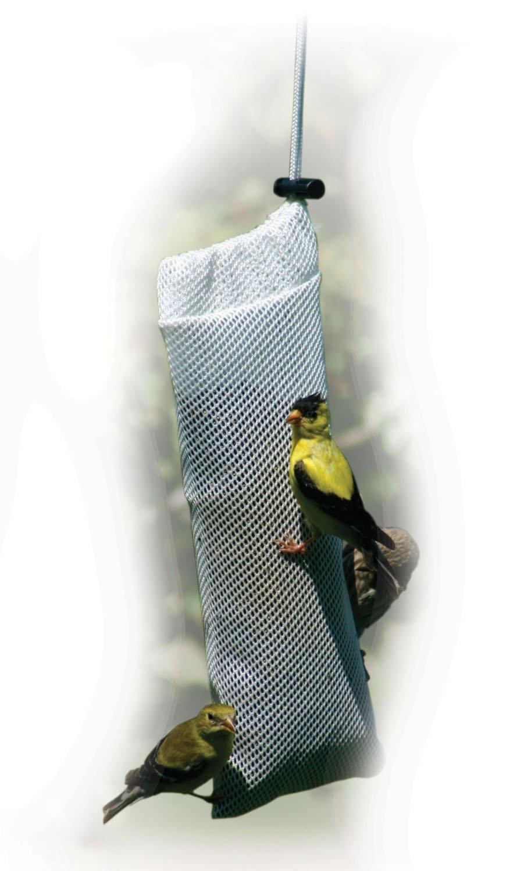 feeders tag seed bird feeder maple thistle backwoods