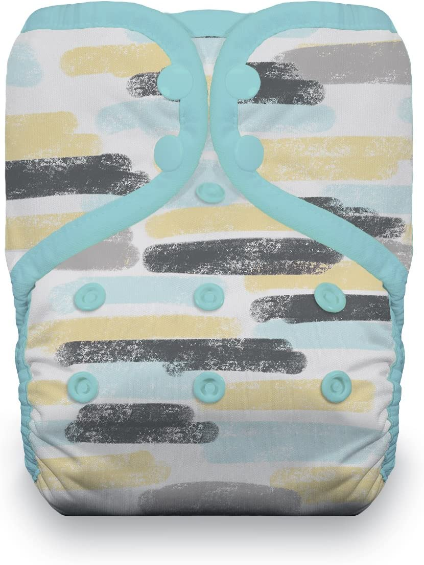 Thirsties TPDSDr Pocket Diaper Dreamscape One Size