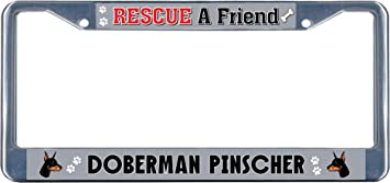 MY BEST FRIEND IS A PUG DOG DOGS Black License Plate Frame Tag Border