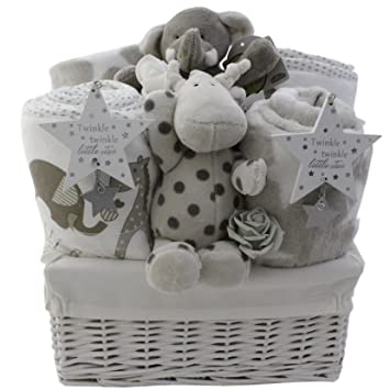 baby gift baskets baby gift hampers unisex neutral twins boy and