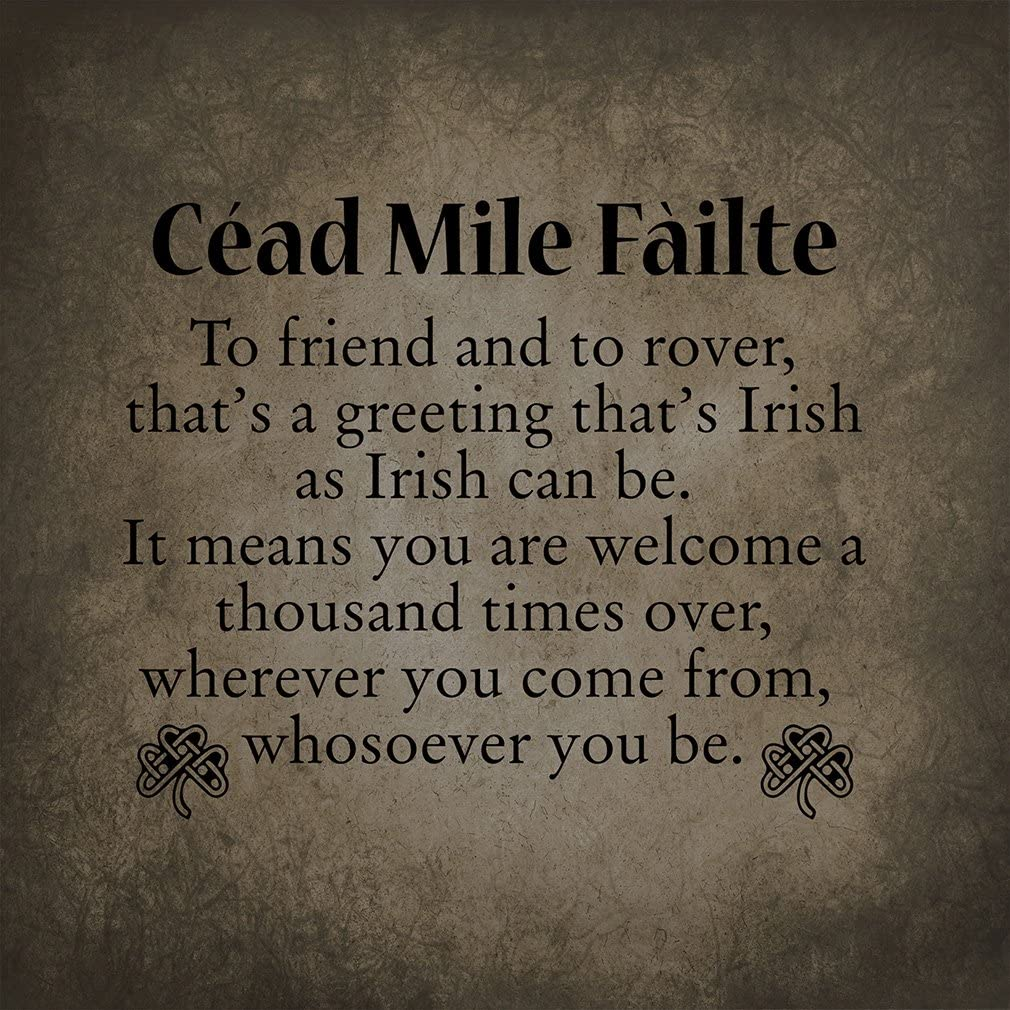 Funny Home Novelty Sign Light Grey Background Cead Mile Failte To Friend And To Rover