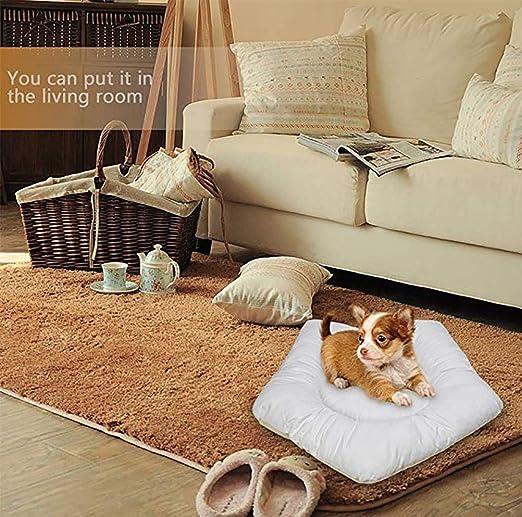 MEIQI Casa Perro Tienda Perro Lavable Cama Gato De Lona,Cushion: Amazon.es: Deportes y aire libre