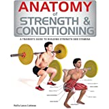 Anatomy of Strength and Conditioning: A Trainer's Guide to Building Strength and Stamina