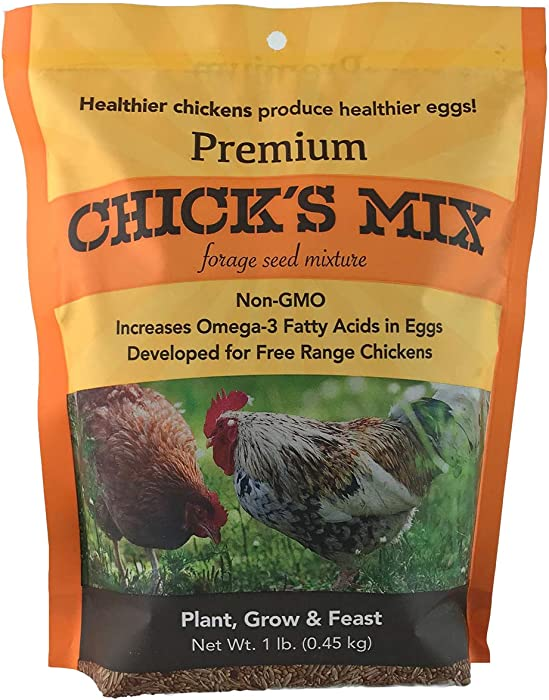 Barenbrug Premium Forage Seed Mixture Ideal for Free Range Chickens, 1 lb Chicks Mix, Orange