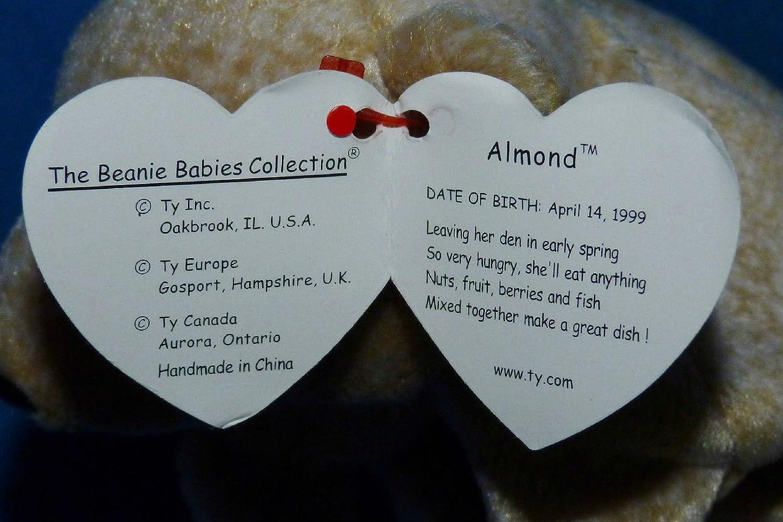Ty Beanie Baby ~ ALMOND the Beige Bear 7 Inch MWMT