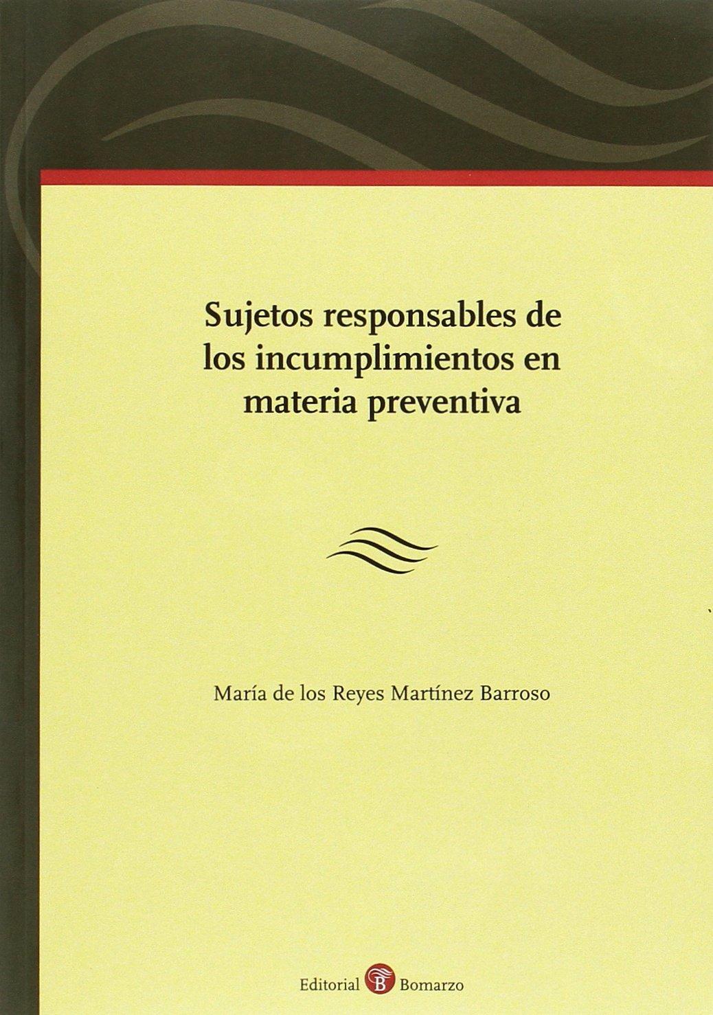 Sujetos responsables de los incumplimientos en materia preventiva: Amazon.es: María de los Reyes Martínez Barroso: Libros