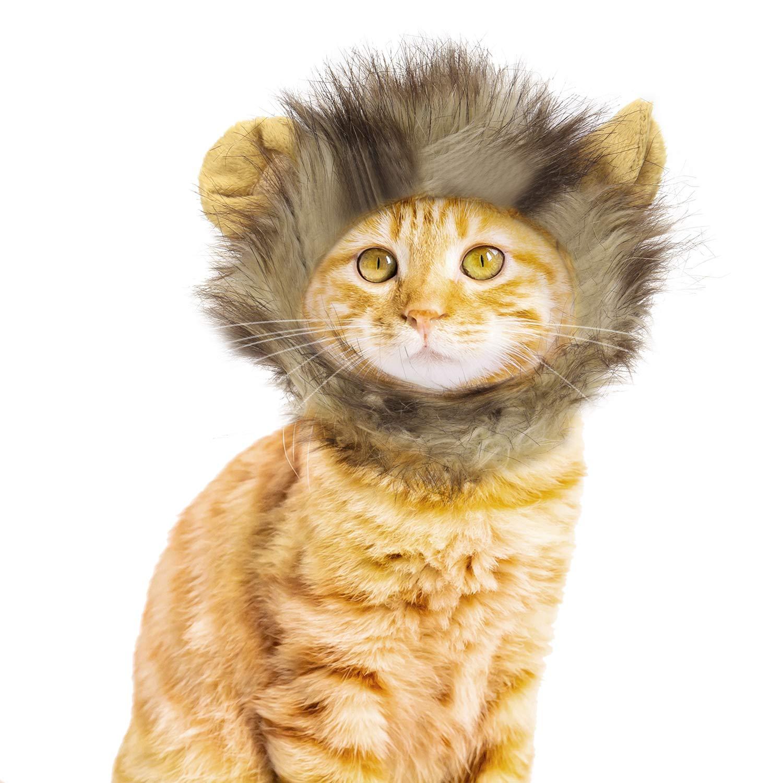 Vavopaw Sombrero de Peluca de Gato Pelusa de Melena Esponjosa Lavable Vestido C/ómodo para Fiesta de Halloween Festival de Disfraces para Gatito Mickey