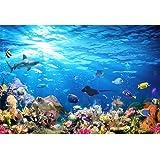 Acuario Fondo HD Submarino Coral Reef Fotos Papel Pintado Acuario ...