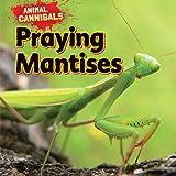 Praying Mantises (Animal Cannibals)