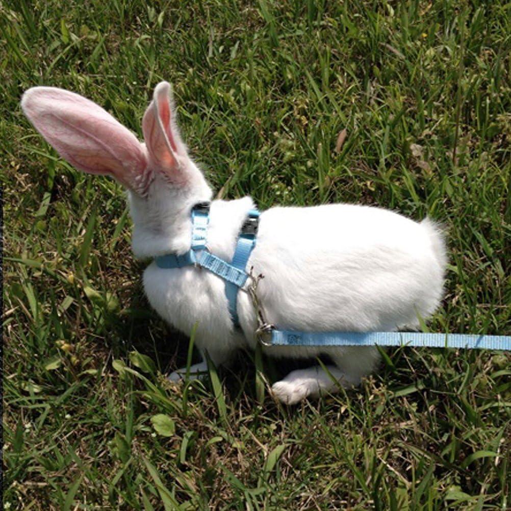UEETEK Rabbit Harness,Adjustable Harness Leash Lead for Rabbits Pets Walking Running Blue