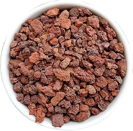 TELLW - Piedras para plantar suelos nutritivos tipo general de perlita para varias carnes, piedra vermiculita volcánica y perlita: Amazon.es: Hogar