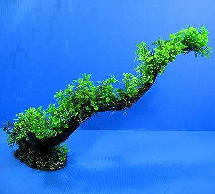 Amazoncom 3d Aquarium Short Pearl Sea Hibiscus Plastic Plants L