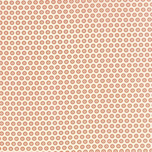 Haunted Gala Bones - Pumpkin - Moda Fabrics