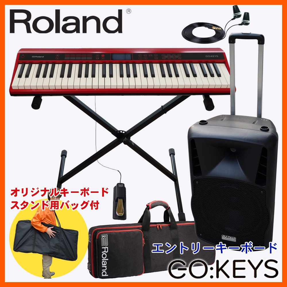 Roland ローランド キーボード GO KEYS(ボランティア演奏などに 大型スピーカー付 キーボードセット)   B07DTCTSMP