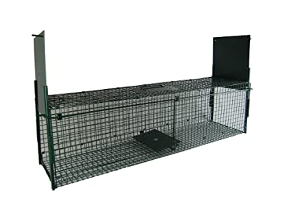 Maxx Trampa de Captura Infaillible – Plegable – Jaula – para pequeños Animales: Conejos,