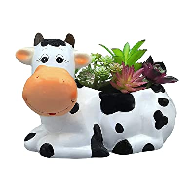 Sixdrop 9-Inch Cow Planter Pot for Small & Medium Size Plants, Decorative Indoor / Outdoor Garden Backyard Flower Ceramic Succulent Pot Planter : Garden & Outdoor